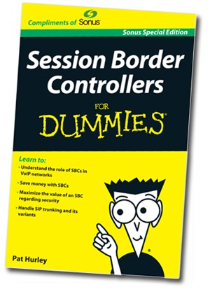 dummies_book_cover